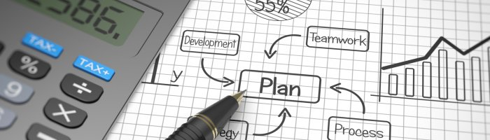 Training budget planning process
